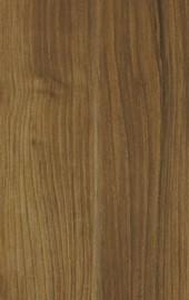 Bolivia Oak