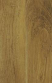 Madagaskar Oak